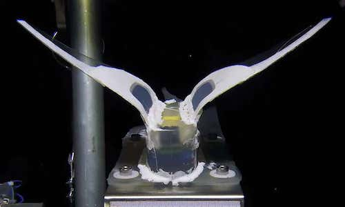 A silicone rubber robot that can withstand the pressures of the ocean's deepest abyss.
